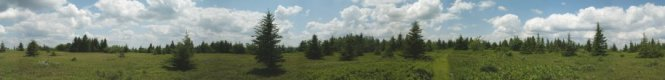 Panoramic Photos